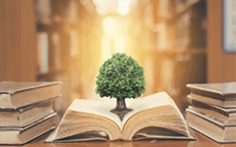 Direito Ambiental e Sustentabilidade